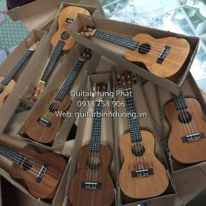 Cửa hàng bán đàn ukulele tenor giá rẻ Bình Dương - Nhạc Cụ Hưng Phát